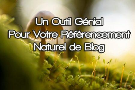 Optimiser le Référencement Naturel de Votre Blog