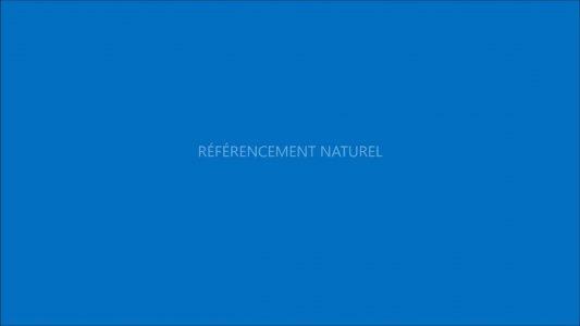 Micro Osmose référencement internet naturel seo Quimper Finistère Bretagne
